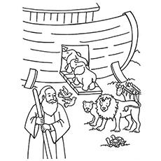 Nohas ark